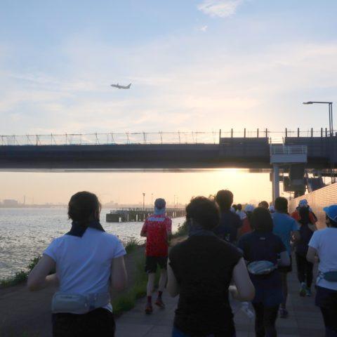 羽田 HICITY RUN」「羽田スポーツステーション」主催のランニングイベントを開催!サムネイル